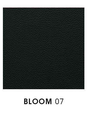 Bloom 07