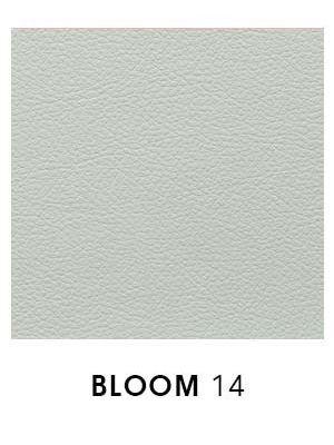 Bloom 14