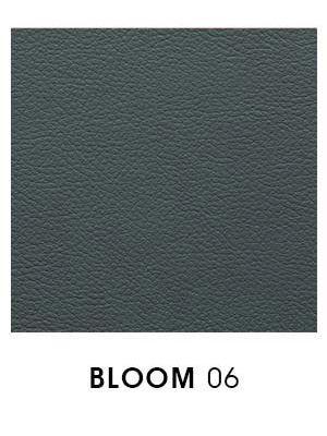 Bloom 06