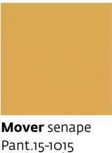 Mover senape Pant.15-1015