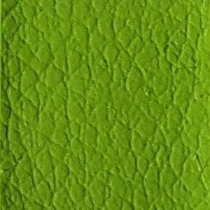 Verde / Green LV 18